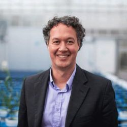 Professor Andrew Lowe (AUS)